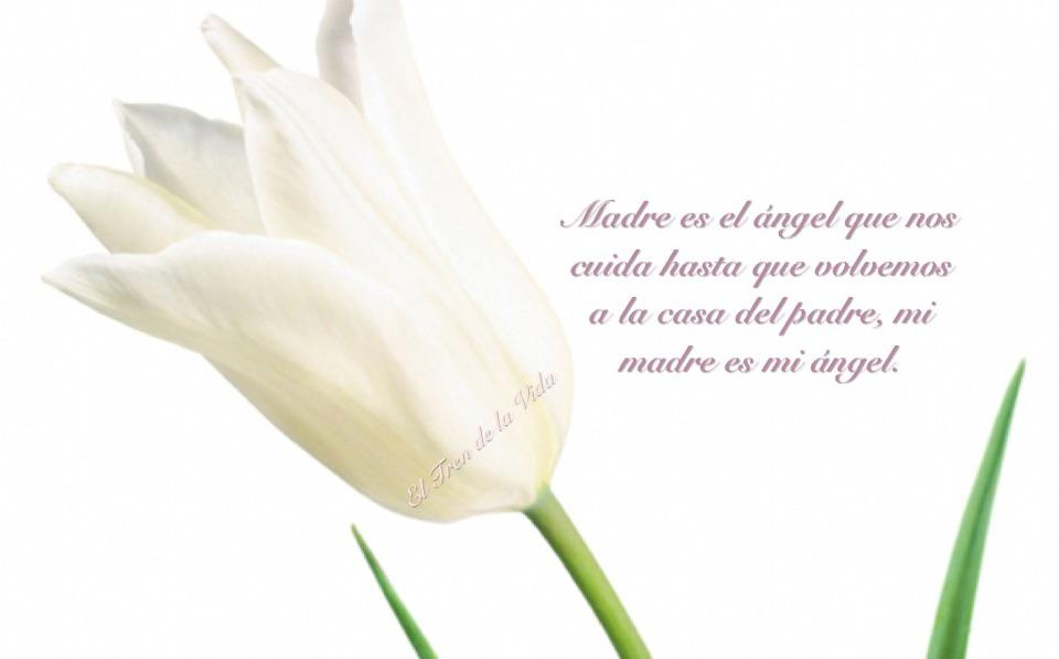 Dia de la Madre imágenes mensajes (5)