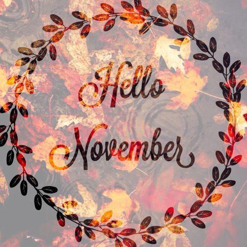 Imágenes Con Frases De Bienvenido Noviembre Y Mensajes Lindos Todo
