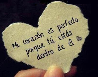 amor-15