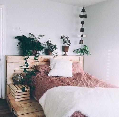 dormi-50