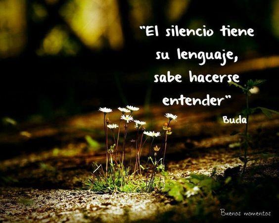 Imágenes Frases Y Reflexiones Para Avanzar Y Entender La