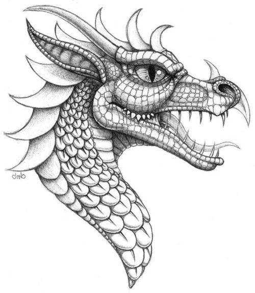 95 Imagenes De Dragones Fantasticos Todo Imagenes