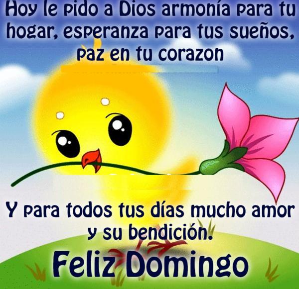 Las Mas Bonitas Imagenes Con Frases De Feliz Domingo Para Compartir