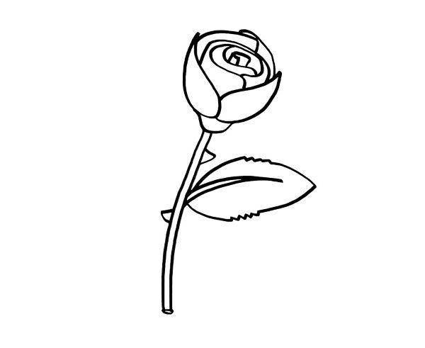 Imagenes De Rosas Bonitas Originales Con Frases Para Dibujar Y