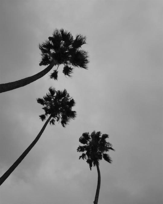 Imagenes Tumblr En Blanco Y Negro Las Mejores Fotos Todo Imagenes